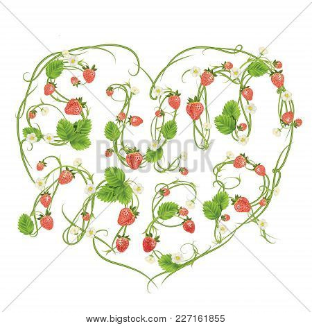 Colorful Floral Summer Word Letters By Strawberry Font. Red Berry Lettering. Vector Realistic Illust