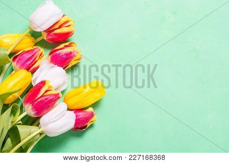 Holiday Background Or Greeting Card. Tulip Flower And Paper Sheeet On Green Turquoise Background. To