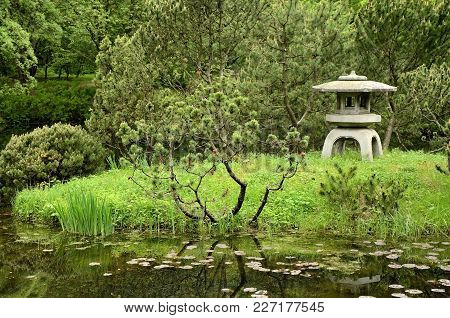 Stone Lantern, Coniferous Trees, Pond In Traditional Japanese Garden.