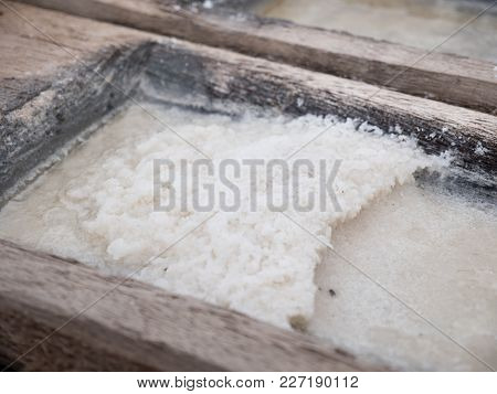 Production Of Sea Salt In The Bali, Indonesia. Salt Crystallizes Out Of The Ground In Salt Farm, Fil