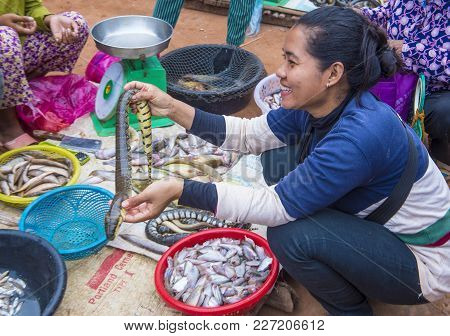 Siem Reap , Cambodia - Oct 18 : Cambodian Woman Selling Snakes In A Market In Siem Reap Cambodia On