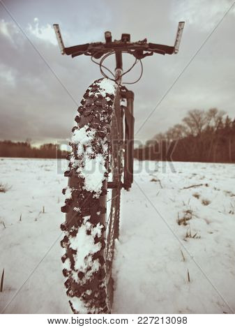 The Bicycle Wheel In The Snow. Detailed Extreme Close Up Low Ankle View. Snowy Filed In Ope Landscap