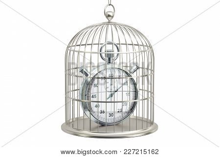 Birdcage With Stopwatch Inside, 3d Rendering Isolated On White Background