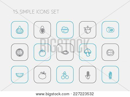 Set Of 15 Editable Food Icons Line Style. Includes Symbols Such As Raspberry, Almond, Fig And More.