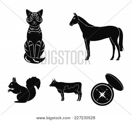 Horse, Cow, Cat, Squirrel And Other Kinds Of Animals.animals Set Collection Icons In Black Style Vec