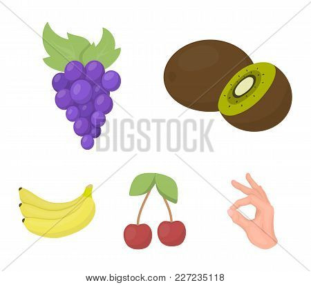 Kiwi, Grapes, Cherry, Banana.fruits Set Collection Icons In Cartoon Style Vector Symbol Stock Illust