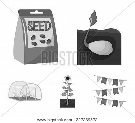 Company, Ecology, And Other  Icon In Monochrome Style. Husks, Fines, Garden Icons In Set Collection.
