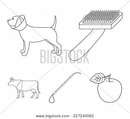 Dog, Cow, Cattle, Pet .vet Clinic Set Collection Icons In Outline Style Vector Symbol Stock Illustra