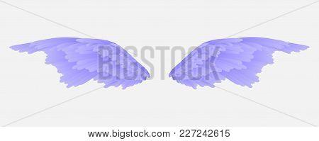 Vector Wings. Angel Wings. Wings Of A Bird. Gradient.