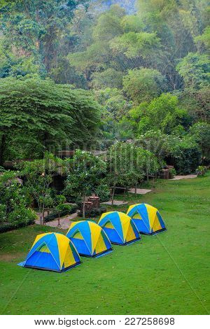 Tent For Sleep Or Relax In The Forest In The Morning