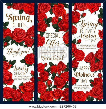 Spring Time Or Mother Day Greeting Banners Of Flowers For Springtime Holiday Season Celebration. Vec