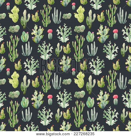 Beautiful Vector Seamless Pattern With Hand Drawn Watercolor Cactuses