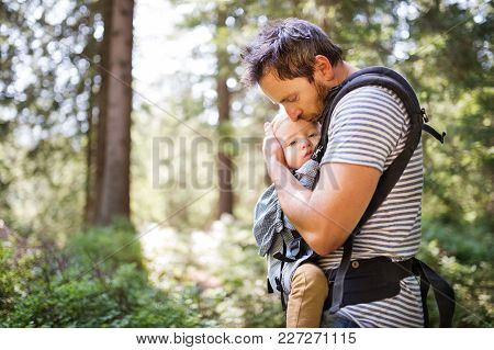 Young Father With Little Boy In A Carrier Walking In A Forest, Summer Day.