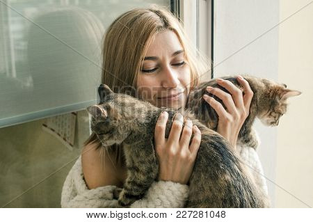 A Lonely Girl With Cats Sits On The Window