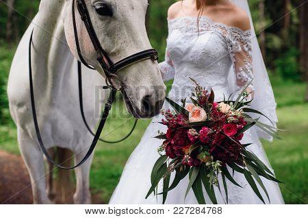 White Horse Sniffs Bridal Bouquet In Bride's Hands
