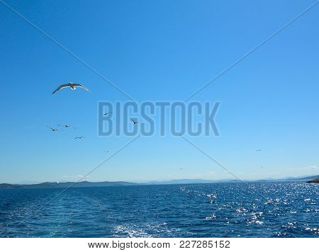 Sea Surface Aerial View. Background Shot Of Clear Sea Water Surface. Blue Sea Water In Calm. Sea Tex