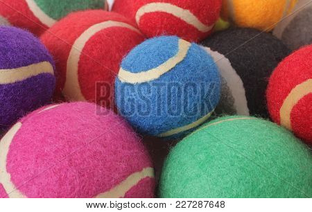 Colorful tennis balls or pet toys