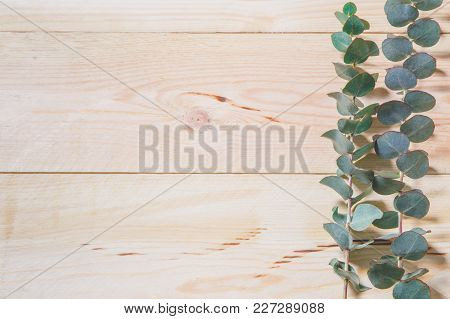 Wooden Background With Green Leaves Around The Edges