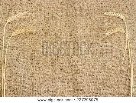 Background Of The Burlap Made Of Natural Coarse Unpainted Spinning Fibers From Hemp And Wheat Stems