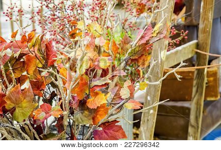 Splash Of Autumn Colors - Autumn Leaves And Branches Gathered And Arranged To Give A Rustic Country-