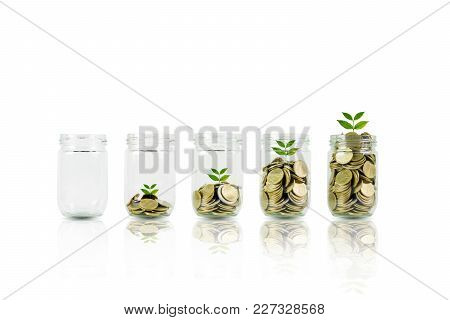 Coins And Plant In Bottle, Business Investment Growth And Saving Concept. Coins In Bottle On White B