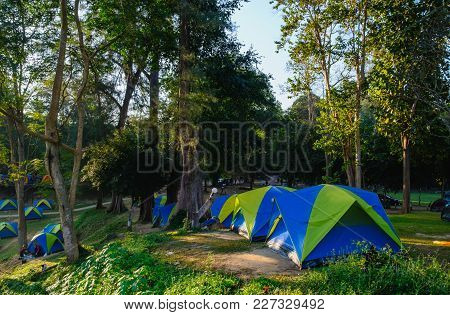 Camping Tent In The Lawn  Morning  Of Forest ,in National Park