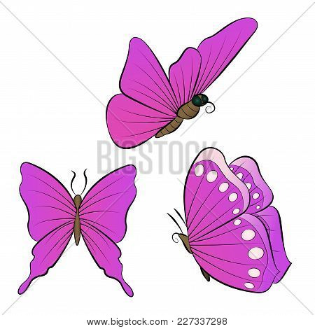 Flying Butterfly With Purple Wings Color. Collection Of Beautiful Insects Vector Illustration.