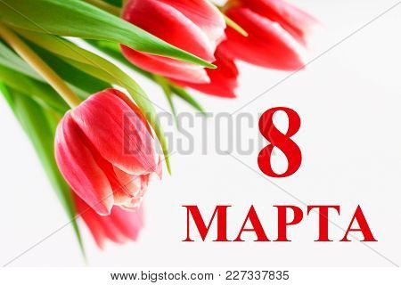 The Text In Russian: From 8 March. International Women's Day. Tulips On A White Wooden Table.