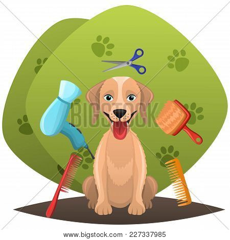 Dog Getting Groomed At Pet Grooming Salon.animal Grooming Salon Illustraion.pet Shop Concept.