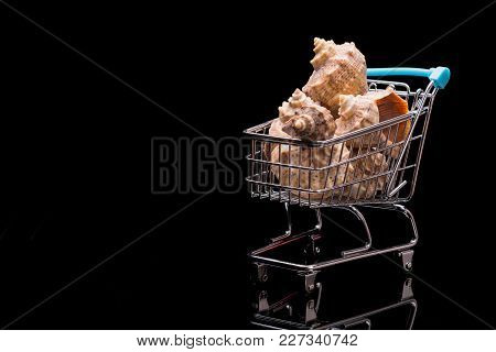 The Cart From A Supermarket Full Of Sea Shells. Space For Text. Preparation For Vacation.