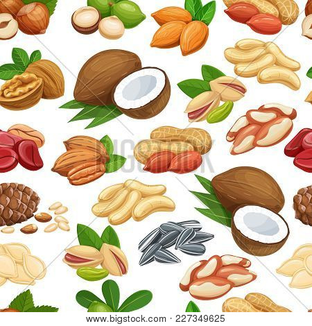 Seamless Pattern With Nuts And Seeds. Cola Nut, Pumpkin Seed, Peanut And Sunflower Seeds. Pistachio,