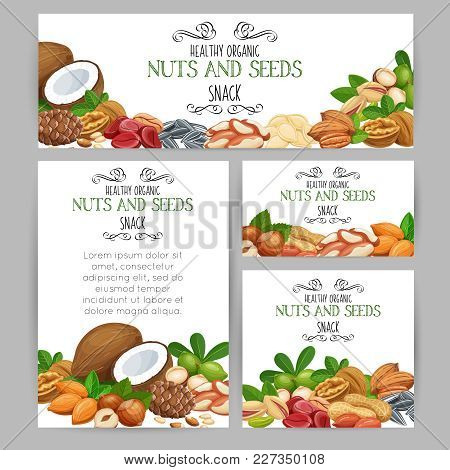Corporate Style Template With Nuts And Seeds. Cola Nut, Pumpkin Seed, Peanut And Sunflower Seeds. Pi