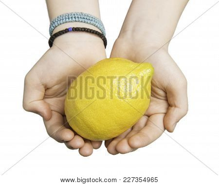 Close Up Of Child Hands Holding A Lemon Isolated On White With Clipping Path At All Sizes.