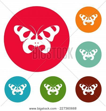 Flying Butterfly Icons Circle Set Vector Isolated On White Background
