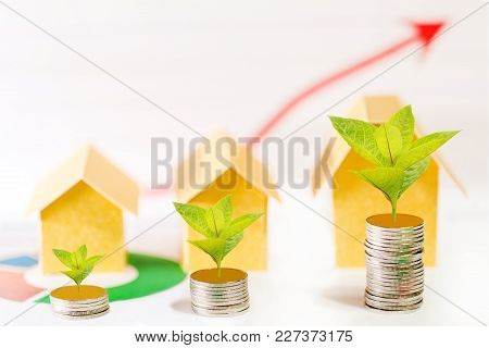 Stack Coin With Plant Growing On Top And Home For Family In Office On Up Red Arrow Graph Background,