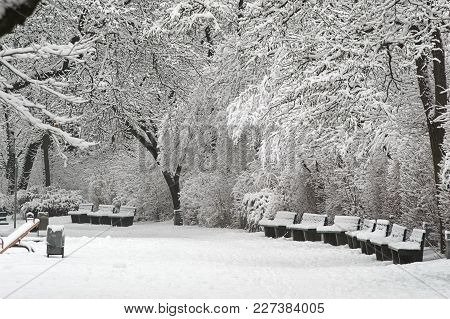 Winter In One Of The Parks Of Münich