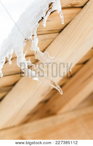 Beautiful Icicles In Strange Form Melt On The Wooden Roof At The End Of Winter And Water Drops Are F