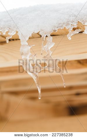 Strange And Beautiful Icicles Melt On The Wooden Roof At The End Of Winter And Water Drops Are Fall