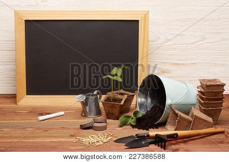 Gardening tools, bucket with soil, peat pots, seeds,  young seedlings  and blank sheet in frame  on a wooden  background. Concept of spring gardening.