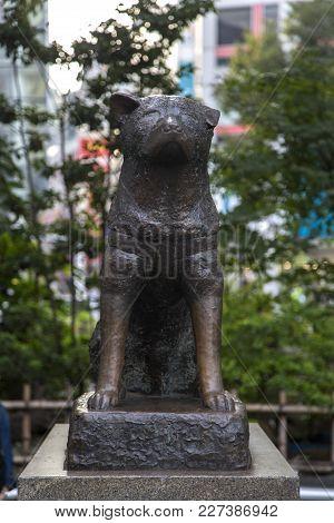 Tokyo, Japan - October 12, 2016: Hachiko Memorial Statue In Shibuya, Tokyo. It Is Bronze Statue Hono