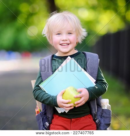Cute Little Schoolboy Outdoors On Sunny Autumn Day. Young Student With His Backpack And Apple. Educa