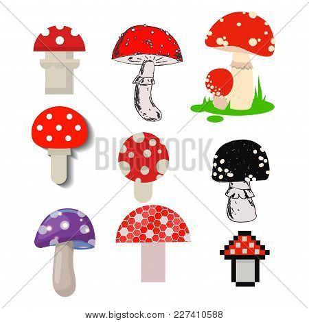 Style Of Amanita Mushrooms Set Vector Poisonous Season Toxic Fungus Food Cartoon Muscaria, Toadstool
