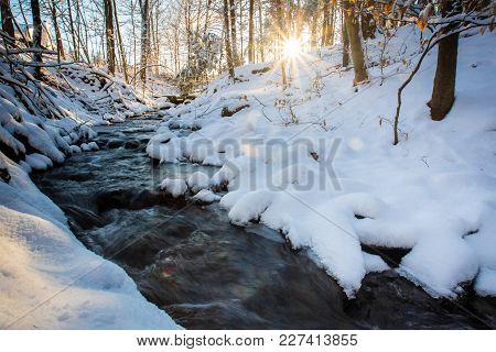 Winter Stream In Forest Morning Sunrise Spring Time