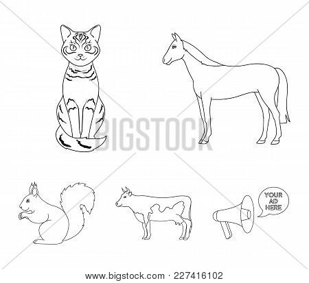 Horse, Cow, Cat, Squirrel And Other Kinds Of Animals.animals Set Collection Icons In Outline Style V