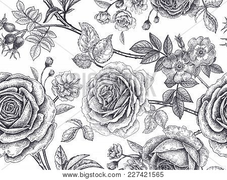 Garden Roses, Flowers, Leaves, Branches, Berries Of Dog Rose. Floral Vintage Seamless Pattern. Black