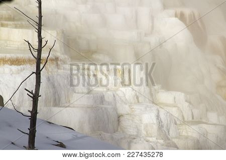 Limestone Formations Of Mammoth Hot Springs, Yellowstone National Park, Wyoming