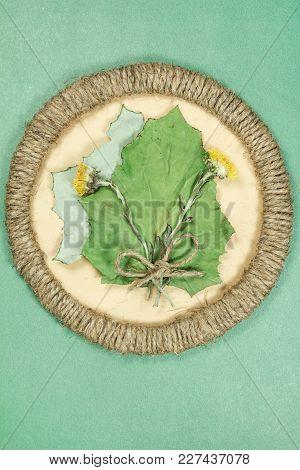 Herbarium. Coltsfoot, Foalfoot, Dry Plants In Framework Made Of Jute Thread. Scrapbooking. Dried Flo