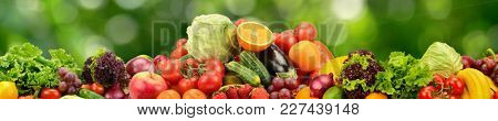 Collage natural vegetables and fruits on dark green blurred background
