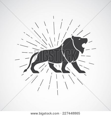 Vector Of Lion On White Background. Animal. Lion Symbol. Vector Illustration For Advertising And T-s