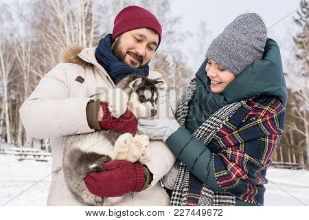 Waist Up Portrait Of Modern Young Couple Holding Adorable Husky Pup And Cuddling With It Outdoors On
